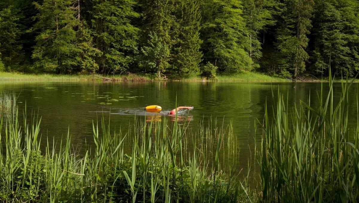 Das Wasser des Filbingsees ist herrlich weich. Die Wassertemperatur - von einigen kalten Stellen abgesehen - durchaus auch für längeres Wildswimming geeignet.