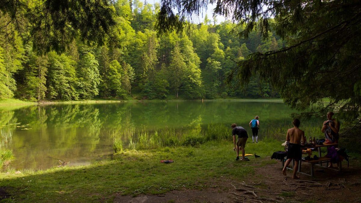 Der Filbingsee ist ein idyllischer kleiner Bergsee über dem Fuschlsee und bietet herrliches Wildswimming Vergnügen