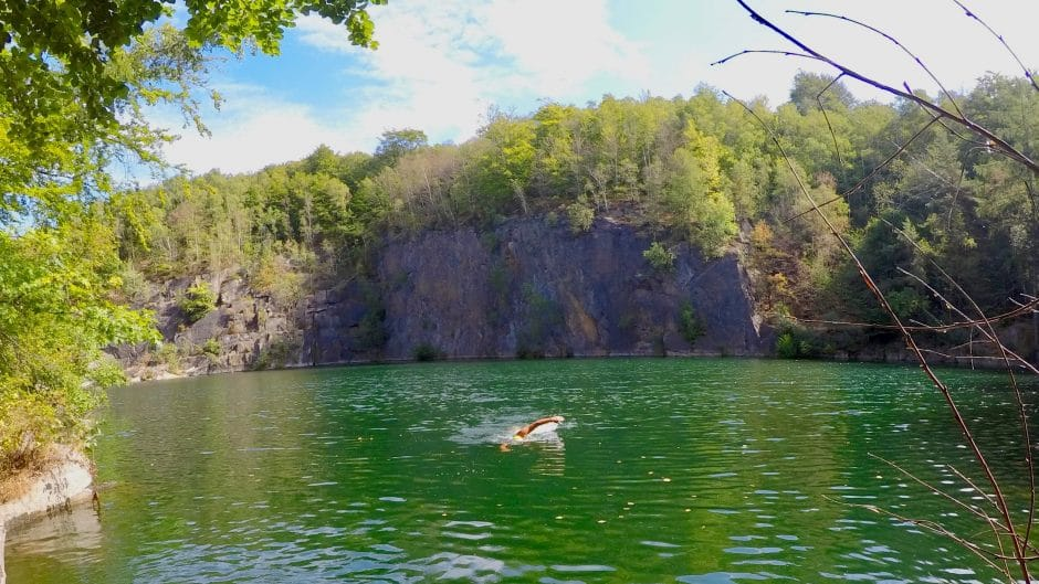 Wildswimming in the quarry
