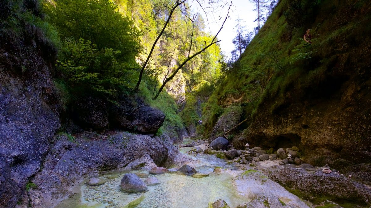 The Wild Swimming spots of the Almbachklamm are more in the lower reaches.
